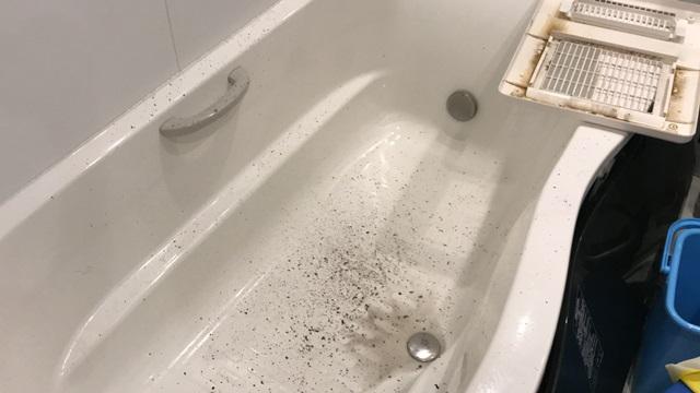 浴室乾燥機、汚れ、ビフォー